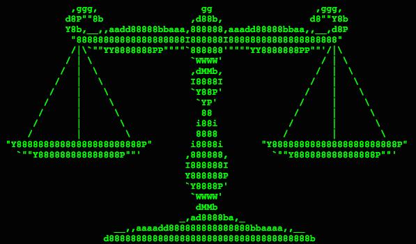 Scales binary code